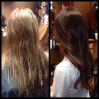 Level 6 Hair Color Pictures Dark Brown Hairs Of Level 6a ...