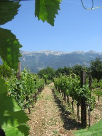 Italian countryside | Italia | Pinterest
