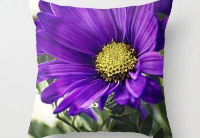 Purple Throw Pillows Living Room