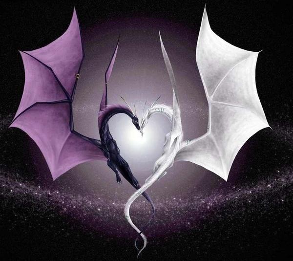 #dragon #love #tattoo stuff