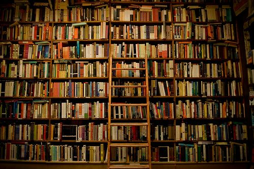 Someday I will have a library with a ladder (in my ridiculously large house for no reason)