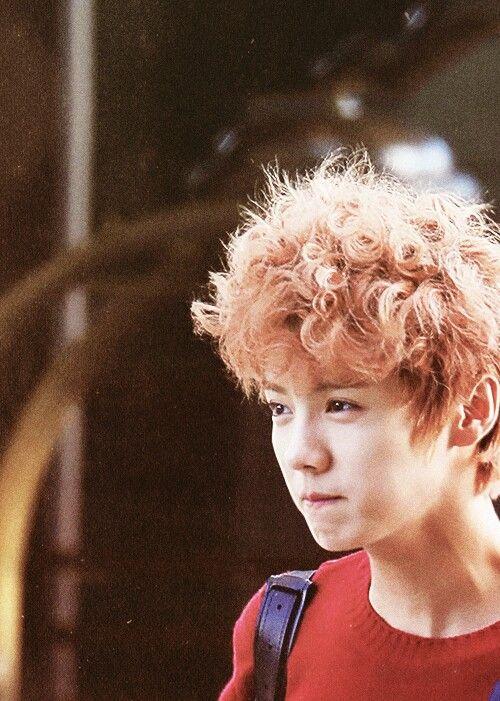 Appreciation Luhan Hair Colors Celebrity Photos