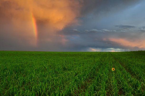 Как фотографировать радугу. Пример композиции кадра