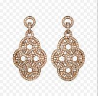 Pretty gold earrings.