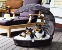 Unique Dog Bed | Unique doggy beds | Pinterest