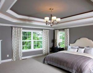 Bedroom Ceiling Home Design Photos Houzz