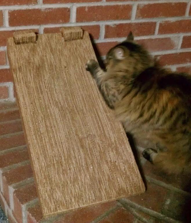 Handmade Cat Scratch Ramp Post DIY Cool Stuff Pinterest