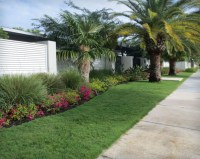 Front Yard Tropical Landscaping Pictures
