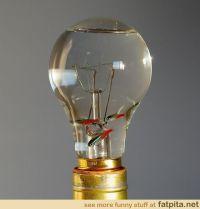 Light Bulb Fish Bowl