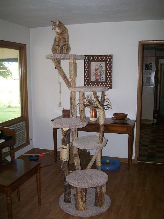 Pin by Megy Boo on diy cat tower ideas Pinterest