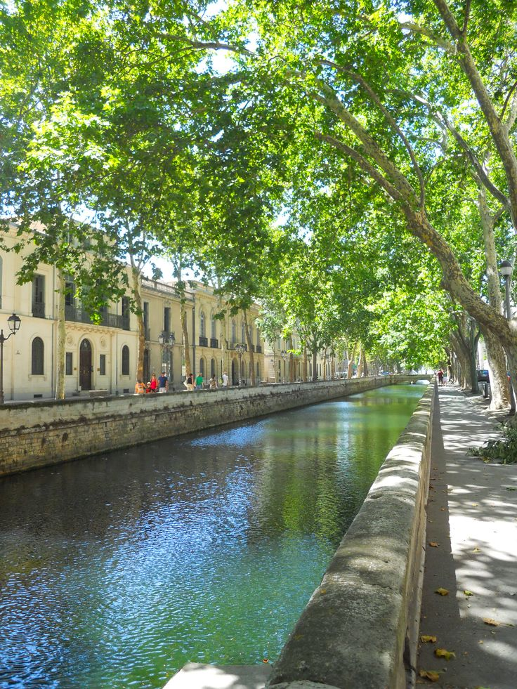Nimes (where my great-aunt lived)