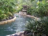Backyard Lazy River | For the Home | Pinterest