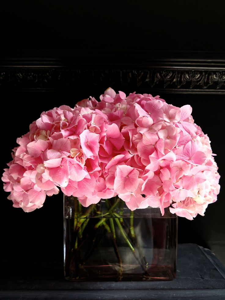pink hydrangeas and black wall - 47 Park Avenue