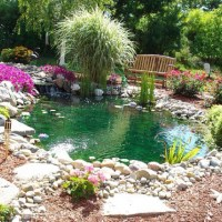 Backyard retreat. | Backyard Ideas | Pinterest