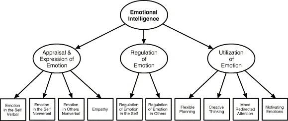 Emotional Intelligence: Mayer And Salovey Emotional