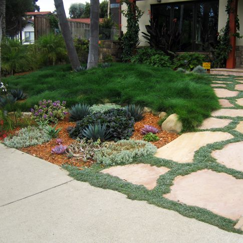 turf front lawn. . curb