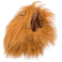Petco Lion's Mane Halloween Dog Costume