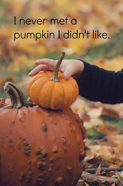 Pumpkin Love, Pumpkin quotes, Fall quotes, Autumn