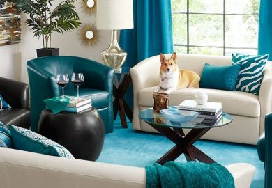 Brown And Teal Living Room Home Design Ideas Pictures