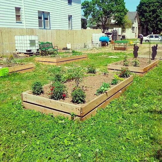 Above Ground Garden Plots