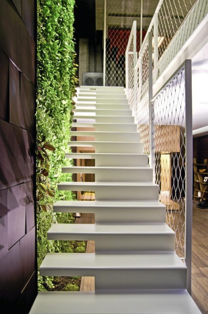 Staircase and a vertical Garden.