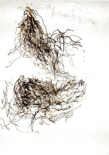 Claude Heath line drawing