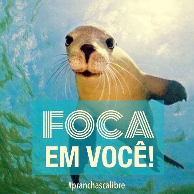 www.dedetizadoratserv.com.br