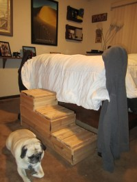 Steps for the dog to get on the bed | House Projects ...