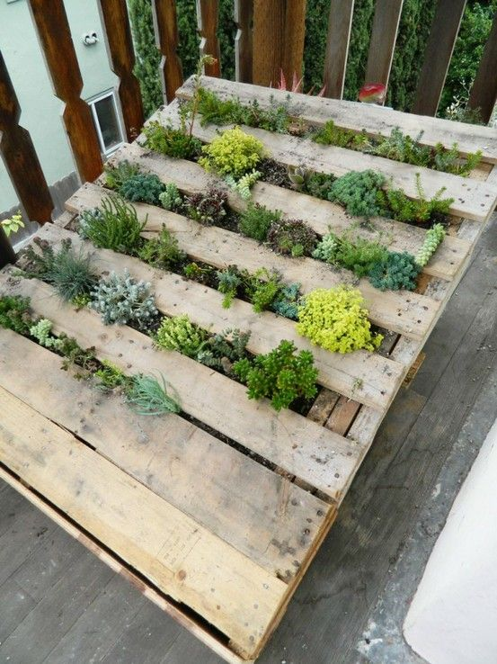 Best Herb Garden Design