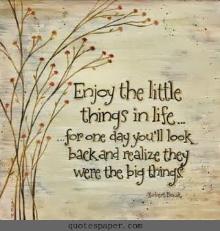 Enjoy the little things in life #Quotes