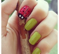 Nail Designs Ladybug | Nail Art Designs