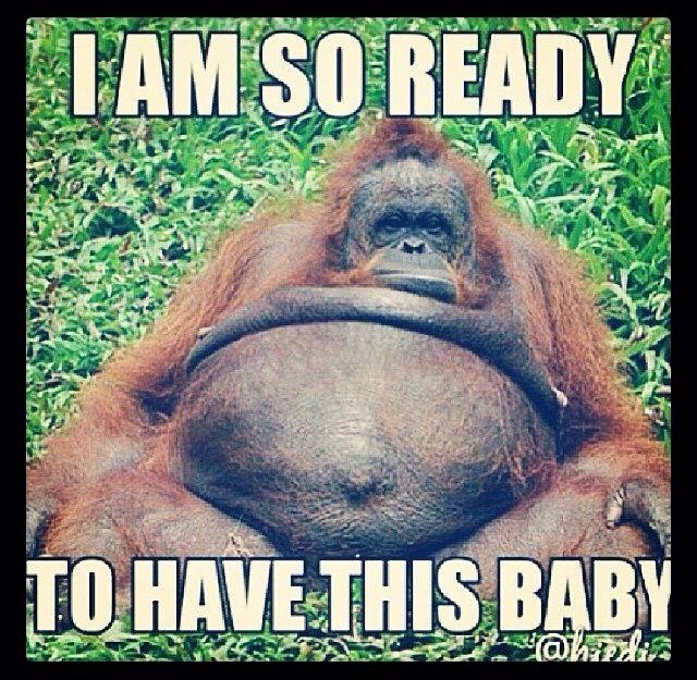 Pregnancy humor --