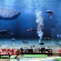 Bill Gates Living Room Aquarium