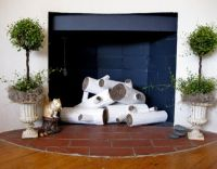 Birch logs   Disused Fireplace   Pinterest