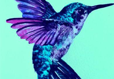 Tattoos Hummingbird Designs