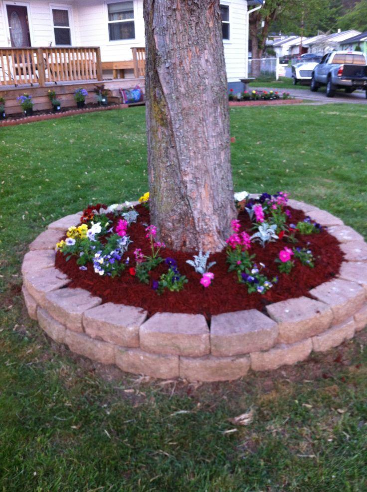 Raised Flower Beds Around Trees