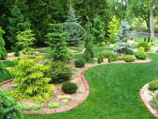 conifer bed design unique garden