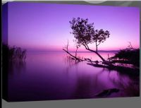 Extra Large Purple Lake Box Canvas Wall Art Picture Scenic ...