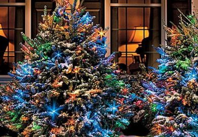 Images About Christmas Ideas On Pinterest Outdoor