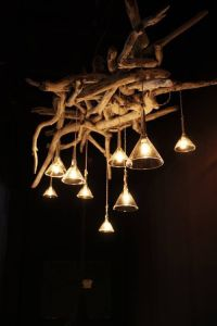 driftwood lights | Lights | Pinterest