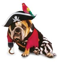 Pirate or Captain Hook Dog Costume | Dog Halloween ...