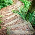 Steps on a steep slope the steps down to winghaven circular wooden