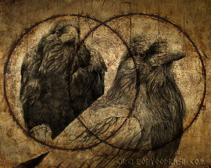 "As Thought is a masculine Principle, Huginn sits upon Odin's right shoulder; as the right side of our body is the masculine side of our human form.  Memory is a feminine Principle, therefor Munnin sits upon Odin's left shoulder; as the left side of our body is the feminine side of our human form.   I fear for Huginn, that he not come back, yet more anxious am I for Muninn never to return.""  ~ The Poetic Edda   fbcdn-sphotos-g-a.akamaihd.net"