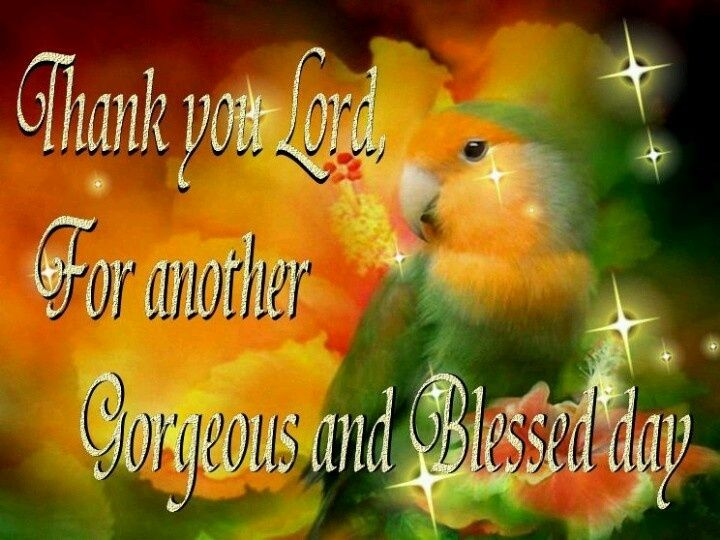 Imágenes De Thank You God For Another Blessed Day Quotes
