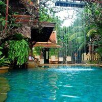Tropical adventure | Amazing pools, outdoor & backyard ...