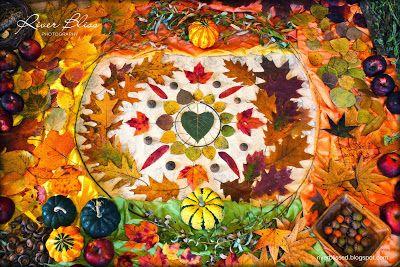 River Bliss: Leaf Mandalas