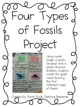 Four Types of Fossils Project ~ Hands-On Activity with Fossils