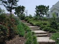 Ideas For Landscaping A Hill In The Backyard | Mystical ...