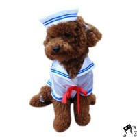 Sailor Boy Dog Costume | Pets in clothes | Pinterest