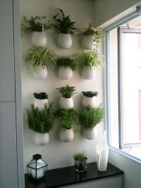 A wall of herb pots for the kitchen | HouseHomeHeart ...